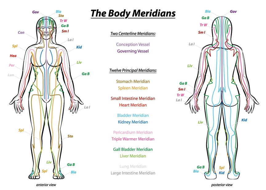 The body meridians Find Your WHY foundation Cheryl Chapman Marion Bevington #FindyourWHY!